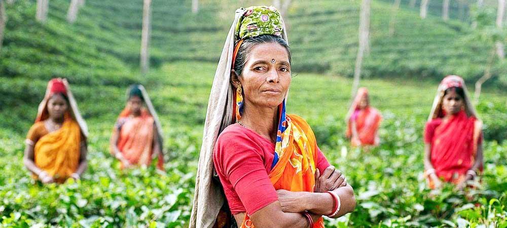 देश में प्रमुख फसलों के उत्पादन में महिलाओं की भागीदारी ७५ फीसदी