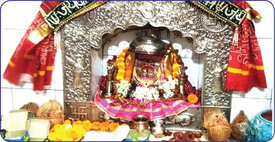 श्री दादीजी सेवा ट्रस्ट (Shree Dadiji Seva Trust)
